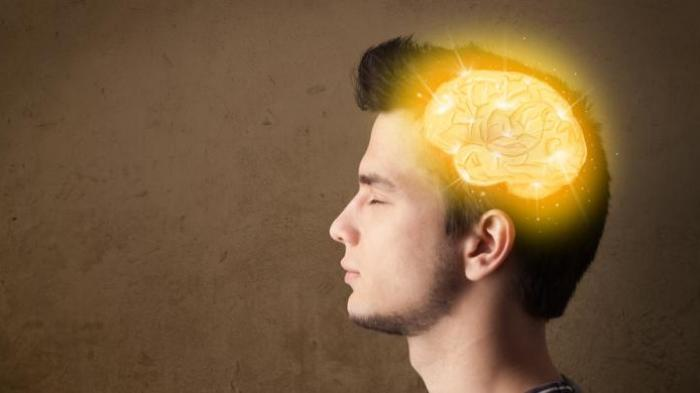7 Makanan yang dapat membuat kinerja otak menurun