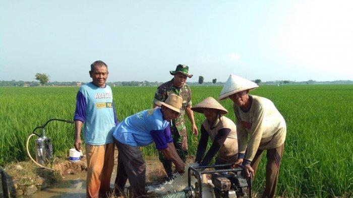 Babinsa Siap Membantu Petani yang Terkendala Kekurangan Pasokan Air