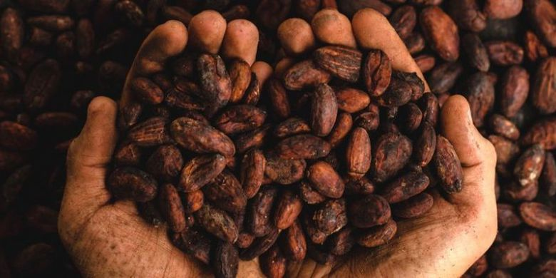 Penggunaan cokelat sudah dilakukan oleh masyarkat kuno sejak 5000 tahun yang lalu