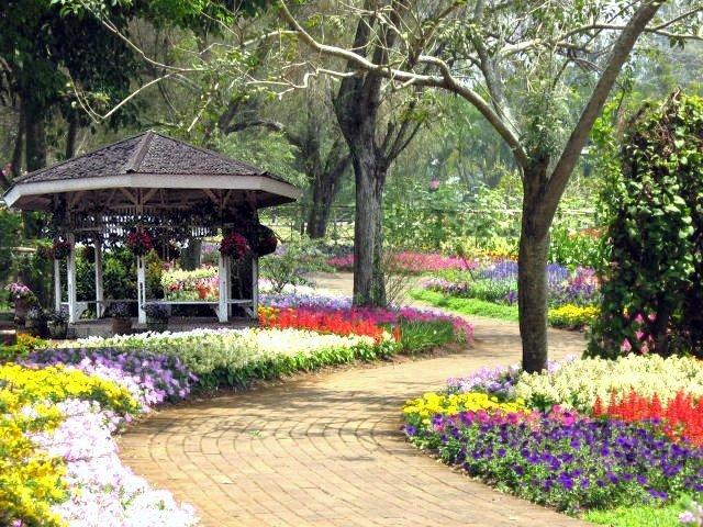 Hari Cinta Pusa dan Satwa Nasional, Kunjungilah Tempat-Tempat Ini Yuk!