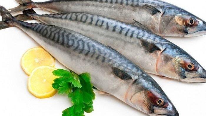 Ikan Kembung Ternyata Lebih Bergizi dari Iklan Salmon, Bikin Panjang Umur!
