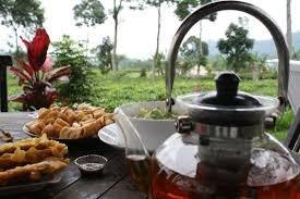 Rumah Teh Ndoro Donker Karanganyar, Minum Teh dengan Pemandangan Kebun Teh