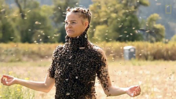 Seorang Dokter menemukan 4 lebah di Mata kiri seorang perempuan