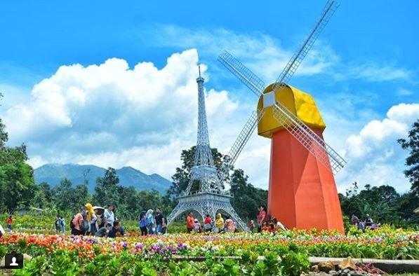 Taman Bunga Celosia, Wisata Romantis Bak di Eropa!