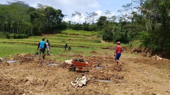 Tanah Longsor Menimpa Korban Longsor di Desa Bantar Banjarnegara