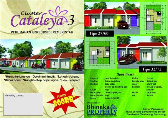 Cluster Cataleya 3